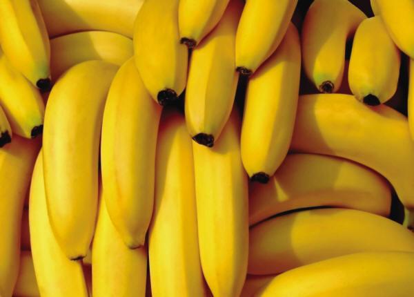 vegetable020.jpg